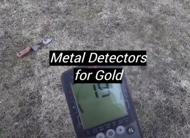 5 Best Metal Detectors for Gold